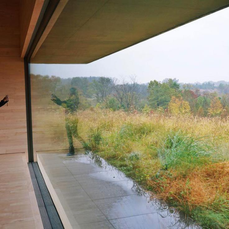 @ambarella - View of fall foliage from the Glenstone Museum - Free museum near Washington, DC