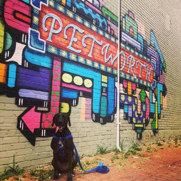 @viajera4eva - Petworth Mural with Dog - Neighborhoods in Washington, DC